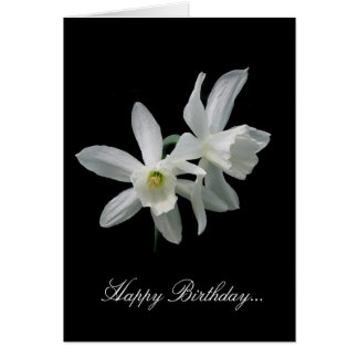 White Narcissus Birthday Card