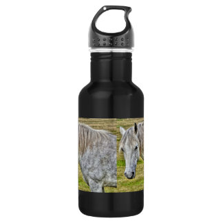 White New Forest Pony Wild Horse 532 Ml Water Bottle