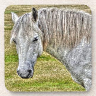 White New Forest Pony Wild Horse Coasters