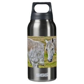 White New Forest Pony Wild Horse Insulated Water Bottle