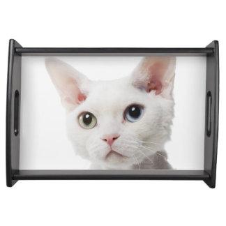 White odd-eyed cat 2 serving tray