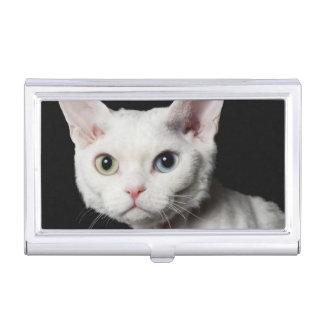 White odd-eyed cat 3 business card holder