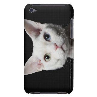 White odd-eyed cat barely there iPod covers