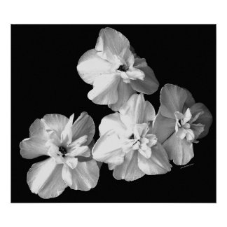 White on Black Print