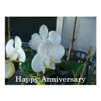 White orchid anniversary post card