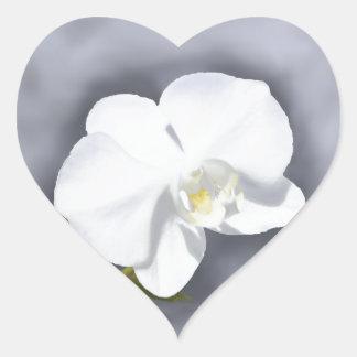 White Orchid Flower Heart Sticker