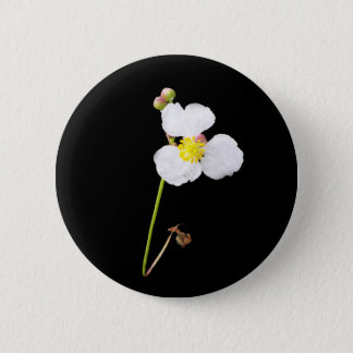 White Orchid Gifts and Apparel 6 Cm Round Badge