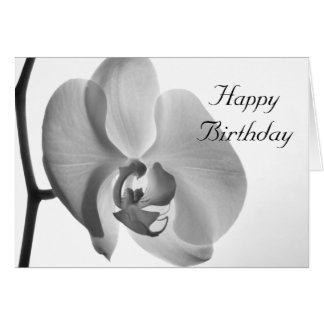 White Orchid Happy Birthday Card