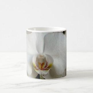 White orchid classic white coffee mug