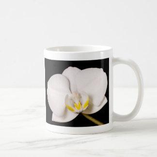 White Orchid on Black Basic White Mug