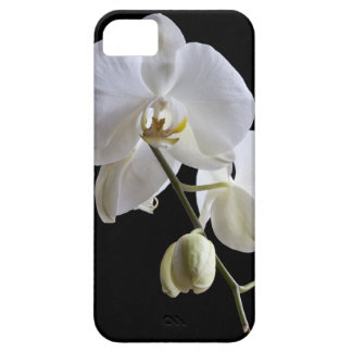 White Orchid on Black iPhone 5 Case-Mate
