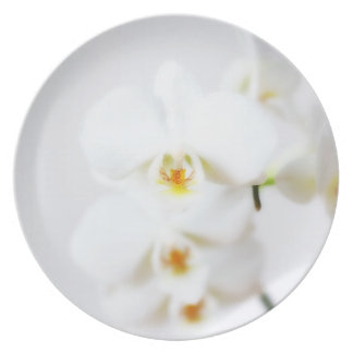 White orchid plate