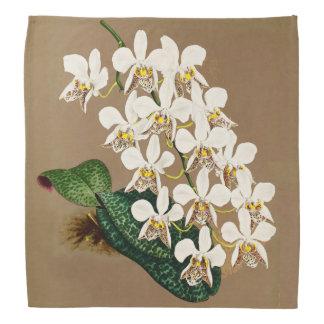White Orchids Botanical Print, Tan Background Bandana