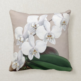 White orchids cushion
