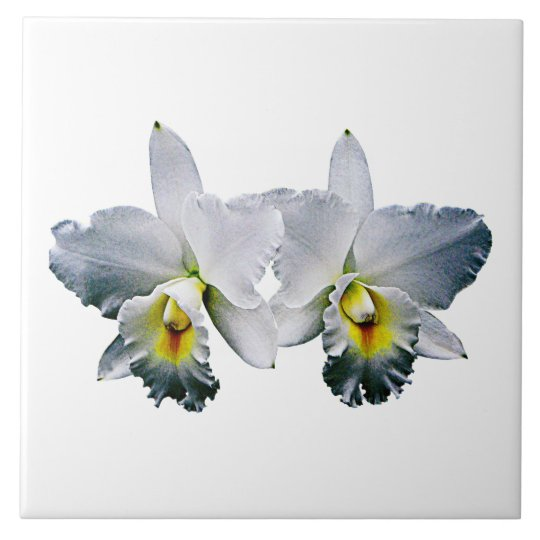 White Orchids Hawaiian Wedding Song Large Square Tile