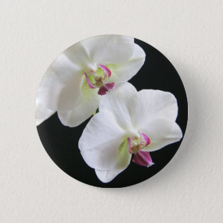 White Orchids on Black 6 Cm Round Badge