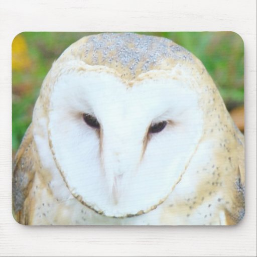 White Owl Bird mousepads custom gifts Owls