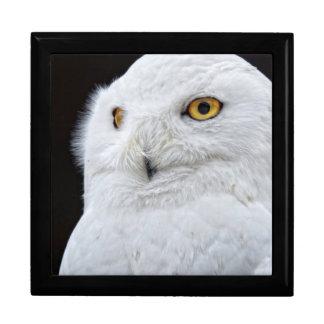 White Owl Gift Box