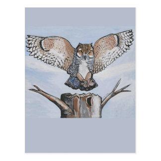 white-owl-landing postcard