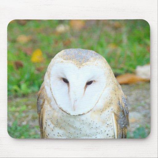 White Owl Mousepads Wildlife nature gifts holidays