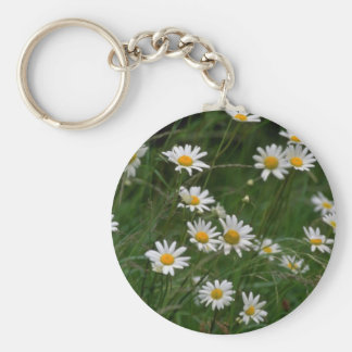 white Oxeye daisy flowers Key Ring