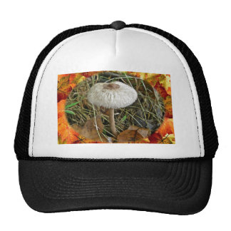 White Parasol Mushroom Coordinating Items Cap