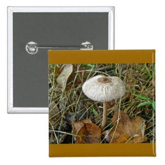 White Parasol Mushroom Magnet 15 Cm Square Badge