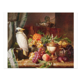 White Parrot exotic fruit bird cockatiel Postcard