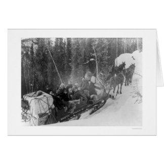 White Pass Alaska Sled Train 1903 Card