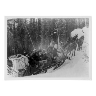 White Pass Alaska Sled Train 1903 Poster
