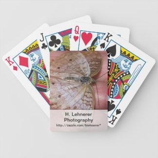 White Peacock Anartia Jatrophae Deck Of Cards