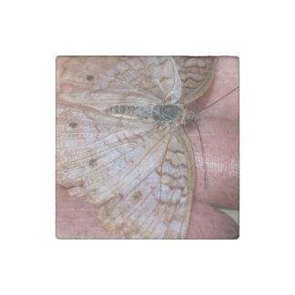 White Peacock Anartia Jatrophae Stone Magnet