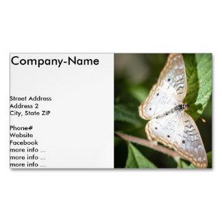 White Peacock Anartia Jatrophae Magnetic Business Cards