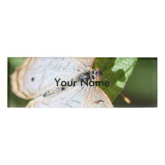 White Peacock Anartia Jatrophae Name Tag