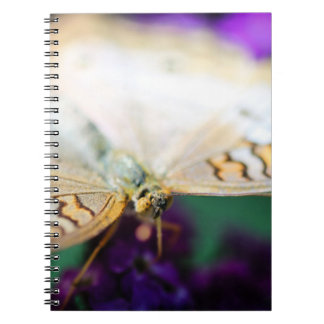 White Peacock Anartia Jatrophae Notebooks