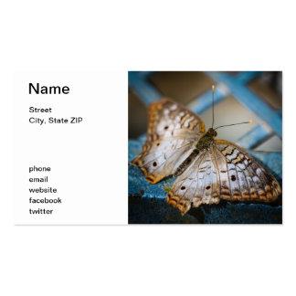 White Peacock Anartia Jatrophae Pack Of Standard Business Cards