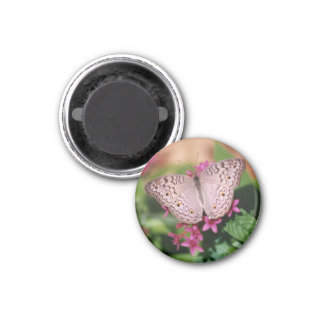 White Peacock Butterfly 3 Cm Round Magnet