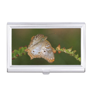 white peacock butterfly on leaves business card holder