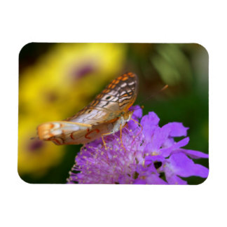 white peacock butterfly on purple bloom rectangular photo magnet