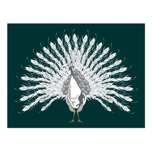 White Peacock Postcards