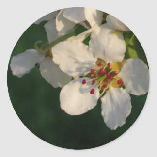 White Pear Blossom Envelope Seals Round Sticker