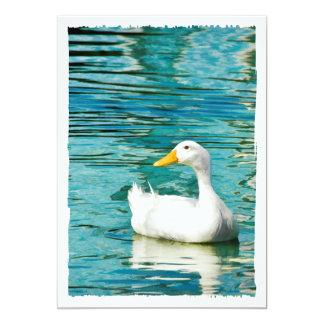 White Pekin Duck  - Nature Photo in Reflections Card