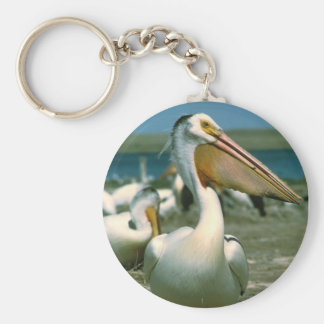 White Pelican Basic Round Button Key Ring