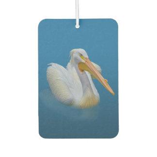 White Pelican Bird on Blue