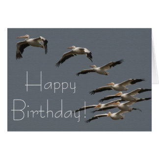 White Pelican Birds Wildlife Animal Happy Birthday Card