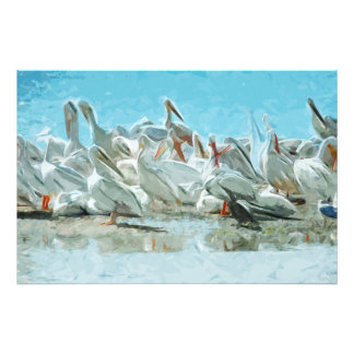 White Pelicans and Black Cormorant Abstract Photo