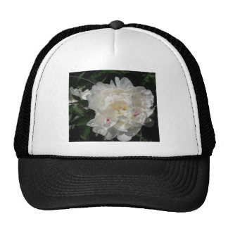 White Peony Blossom - photograph Hats
