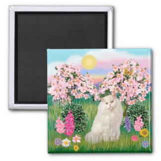 White Persian Cat - Blossoms Fridge Magnet