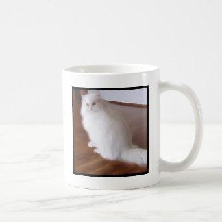 White Persian cat mug