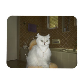 White persian cat sitting on chair in bathroom rectangular magnet